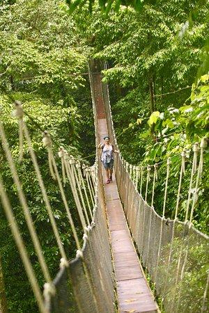 Parrita, Costa Rica: photo3.jpg