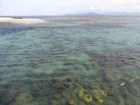 Green Island, Australia: Inner reef area