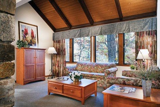 Lake Lure, Carolina del Norte: Suite Living Area