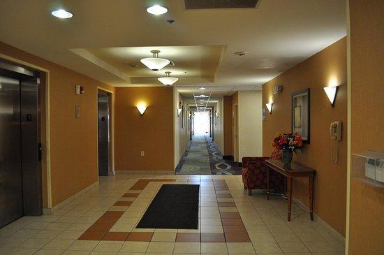 Williamston, NC: Elevator Lobby