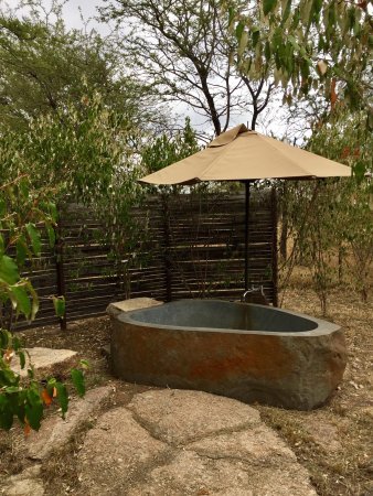 Sayari Camp, Asilia Africa: photo2.jpg