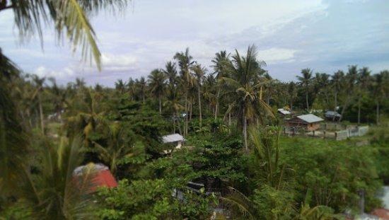 Skip's Beach Resort: Photo from rooftop 2