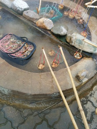 Something Different Day Tours: Cooking Eggs in a Natural Hot Spring