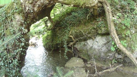 Pavliani, Grecja: Πάρκο Αναψυχής
