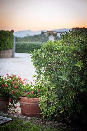 Lamporecchio, Italia: zachód słońca