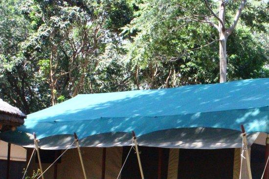 Basecamp Masai Mara Photo