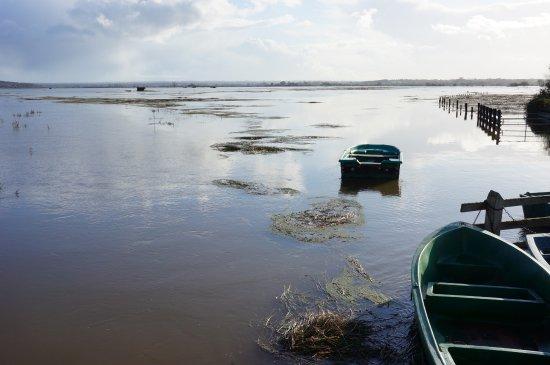 Isigny-sur-Mer, France: la Blanchie ( hautes eaux) dans les marais du parc