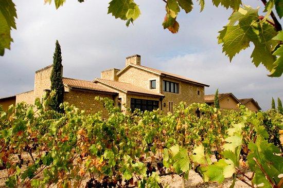 Elciego, Espanha: Exterior de Bodegas Murua, entre viñedos