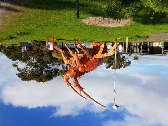Kingston SE, Australia: 20170807_152217_large.jpg