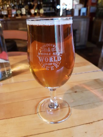 The Old Bookbinders Ale House: Enjoying a half pint