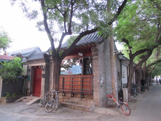 Nanluoguxiang : Hutongs among huge tress