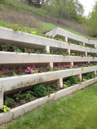 Red Wing, MN: Come see our amazing Flower Wall