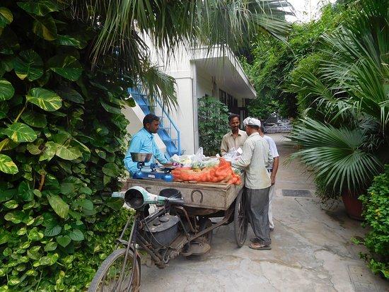 Lutyens Bungalow: Fresh vegetables