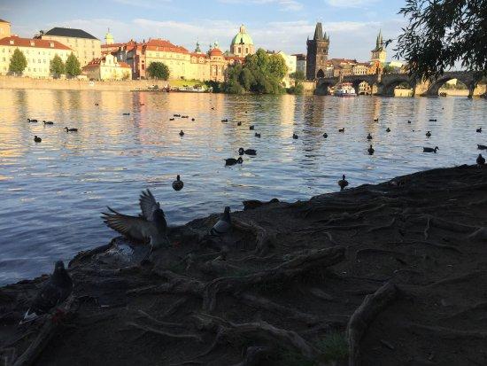 Avantgarde Prague Tours: photo0.jpg