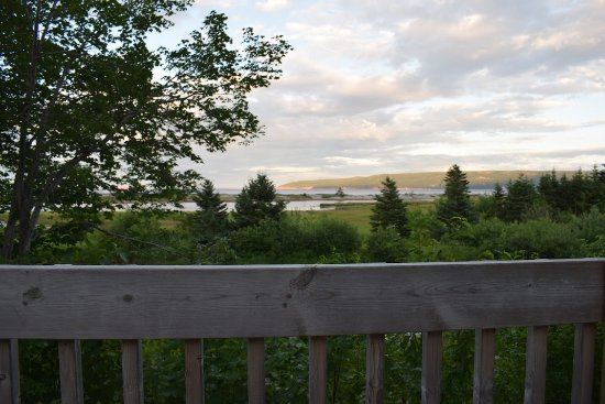 Cabot Shores Wilderness Resort: View from deck of the blue yurt