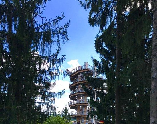 Orscholz, Almanya: photo7.jpg