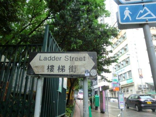 ถนนแลดเดอร์