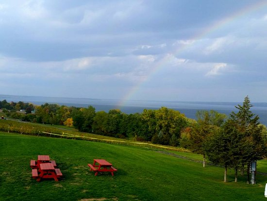 Ovid, NY: Our beautiful panoramic view of Cayuga Lake!