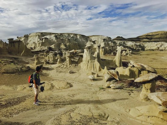 Bisti/De-Na-Zin Wilderness : The area NE from the Cracked Eggs, hike around the hills or climb on top to see an overview.