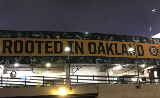 Oakland-Alameda County Coliseum: photo6.jpg