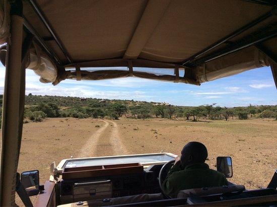 Mahali Mzuri - Sir Richard Branson's Kenyan Safari Camp: photo2.jpg