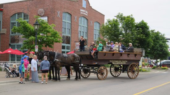 Emerald Isle Carriage Tours