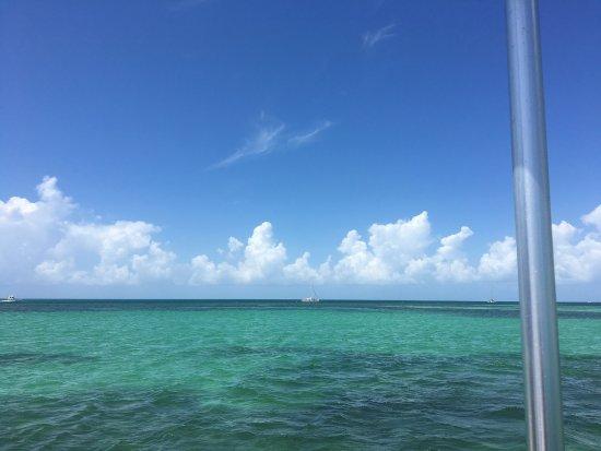 Blu Q Catamaran: photo0.jpg