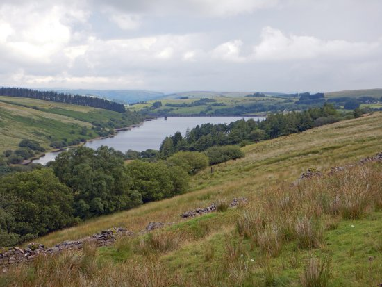 Llanidloes, UK: Cray Reservoir from the A4067