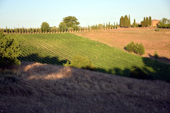 Torrita di Siena, Włochy: Agriturismo Santa Maria
