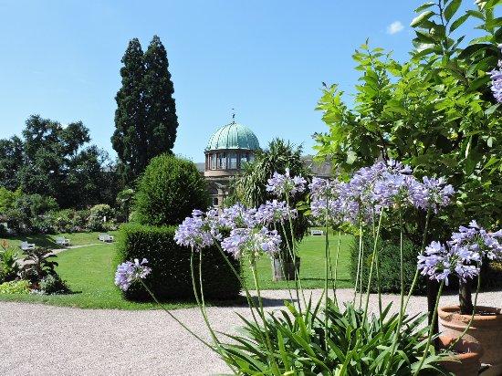 Jardín Botánico De Karlsruhe Karlsruhe Alemania Picture Of