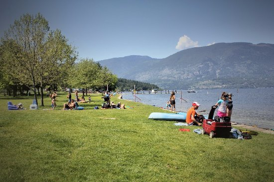 Salmon Arm, Canada: Grassy area at Canoe Beach. There is also a nice sandy beach.