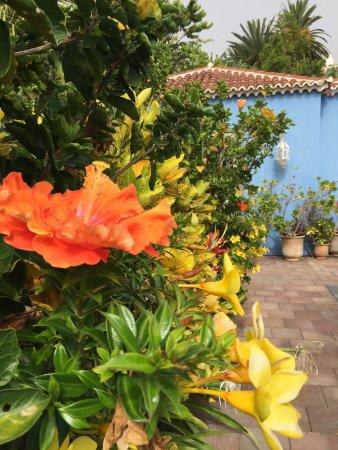 Hotel Hacienda De Abajo: photo0.jpg