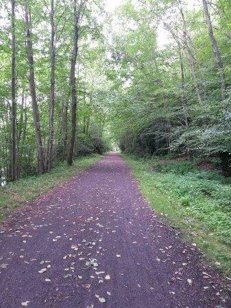 Pocono Biking: View of the trail