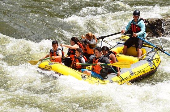 Whitewater Rafting, LLC: Colorado River