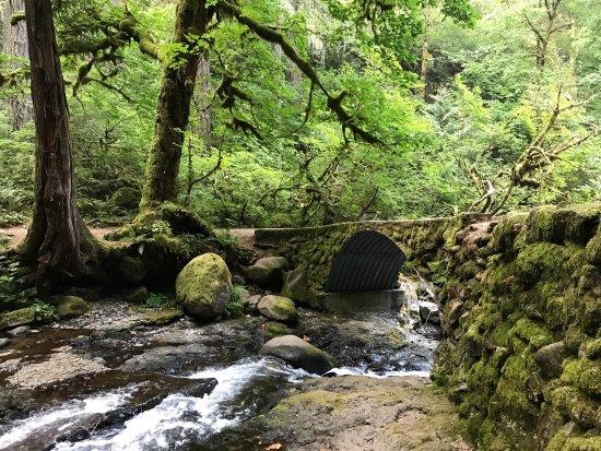 Wiesendanger Falls: photo5.jpg