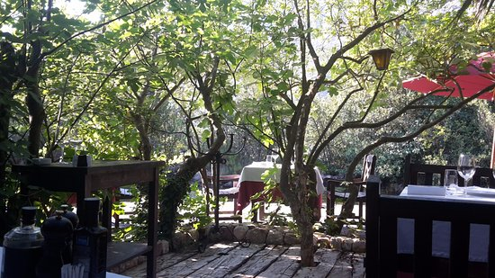 Stari Mlini Restaurant: Uitzicht vanaf onze tafel