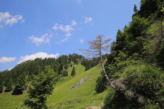 Amden, Schweiz: Ruhe und schöne Naturlandschaften rund um das Hotel