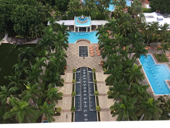 Bild von hyatt regency coconut point resort for Stufe regency