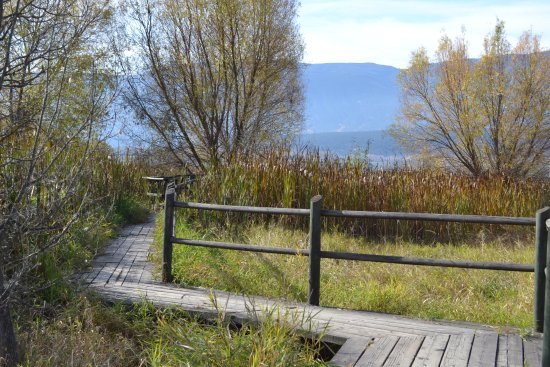 Salmon Arm, Canada: Board Walk in the Nature walk