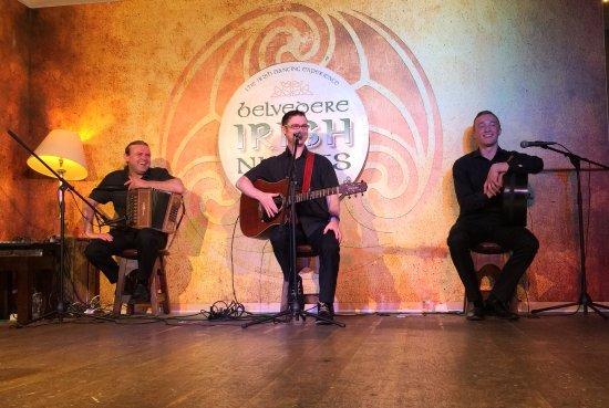 Belvedere Irish Night: Excellent Musicians