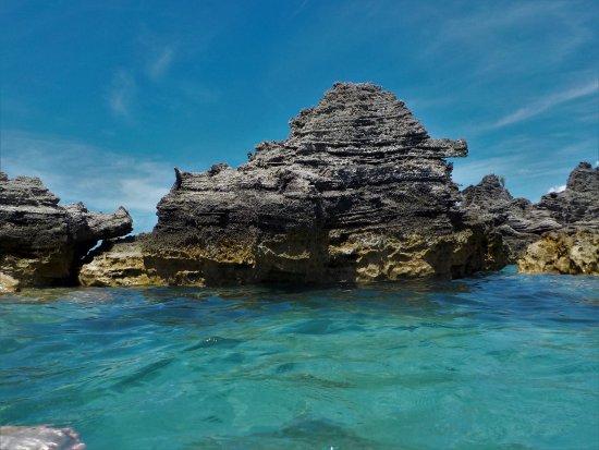 Hamilton, Bermuda: Snorkel Location