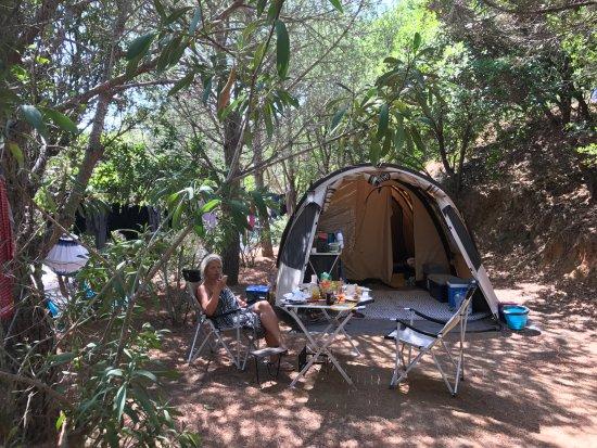 U Pirellu Camping : de hele dag voldoende schaduw