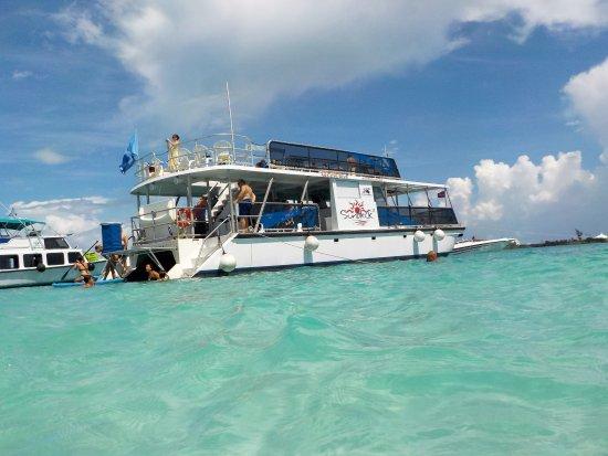 Hamilton, Islas Bermudas: Sundeck Boat