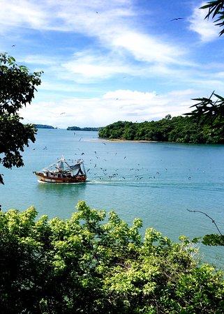 Isla Boca Brava, Panama: The view from HBB.