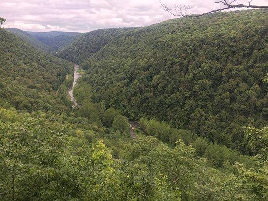 Pine Creek Gorge: photo6.jpg