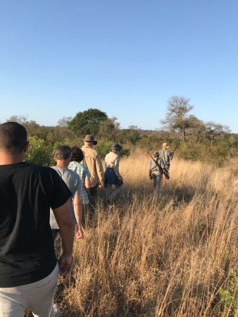 Skukuza, Sydafrika: Walking safari