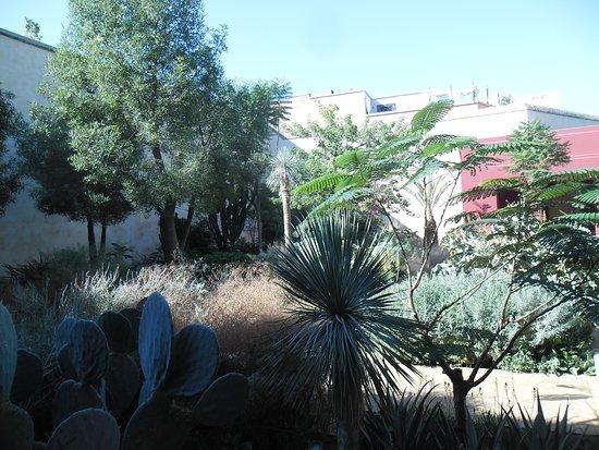 Piante picture of le jardin secret marrakech tripadvisor for Le jardin secret