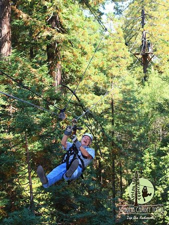 Sonoma Canopy Tours: 70 yrs old, having fun like a kid