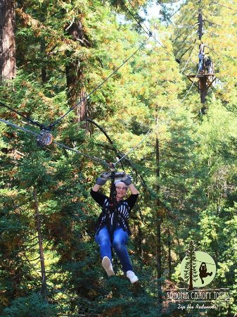 Sonoma Canopy Tours Smiles all day long & Smiles all day long - Picture of Sonoma Canopy Tours Occidental ...