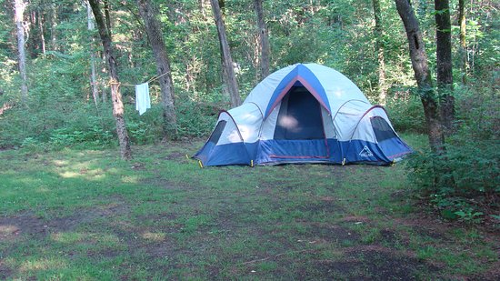 Lebanon, TN: large campsite but poor drainage meant the ground was pretty muddy